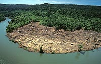 Arial view of deforestation